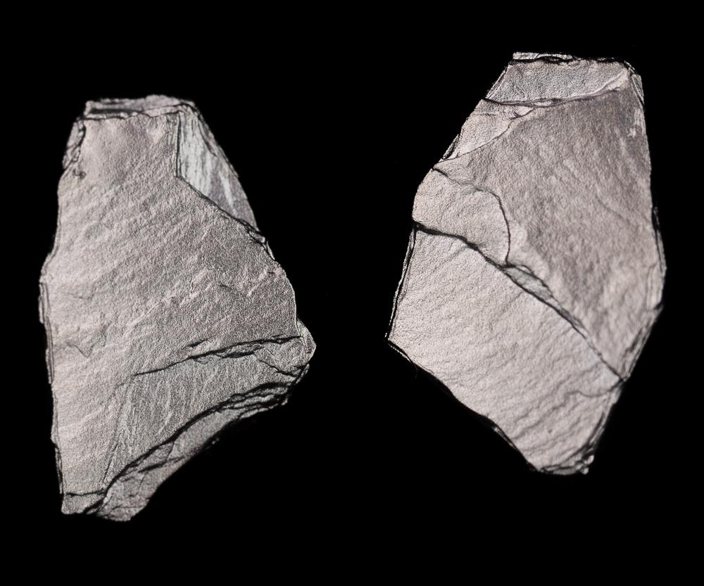 Steenvormige oorbellen van donkergrijs zilver
