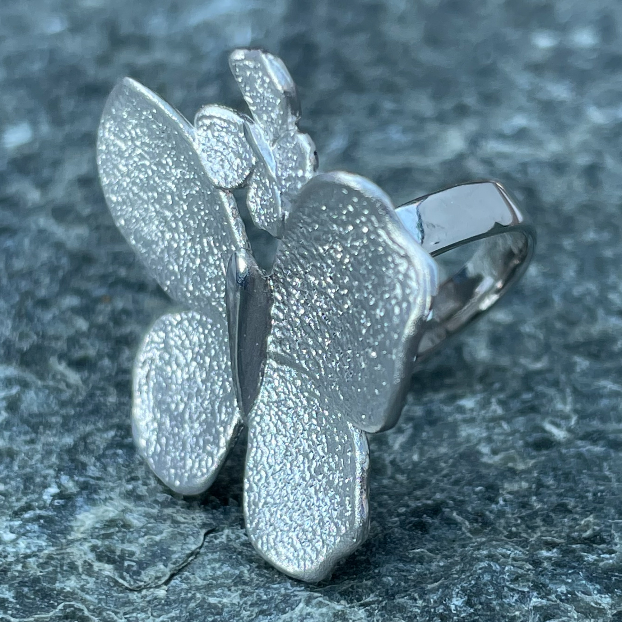 Schitterende en grote zilveren vlinder ring