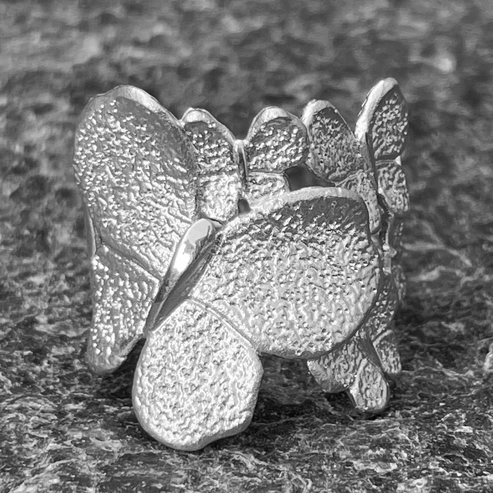 Kleinere zilveren vlinderring